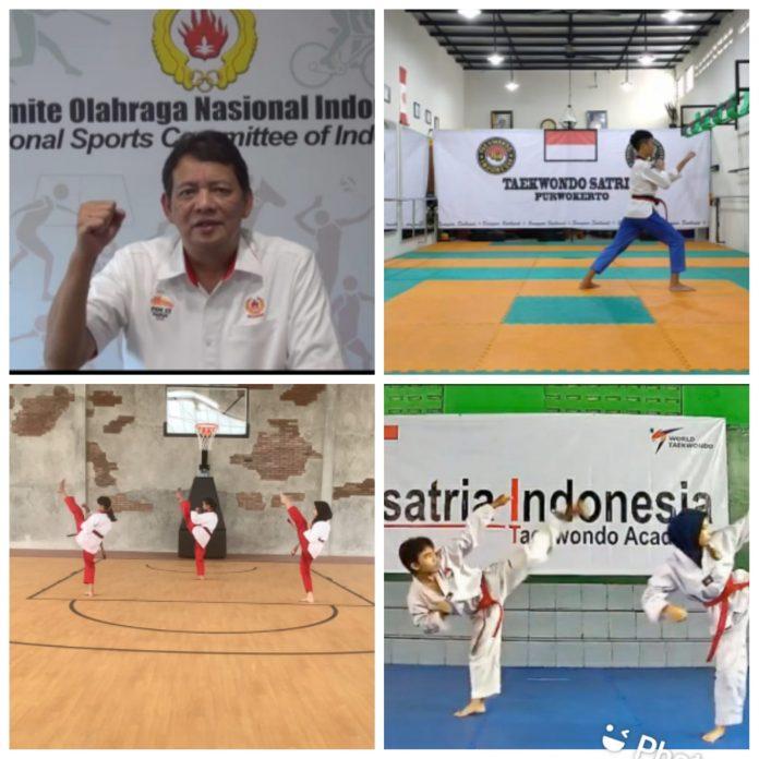 taekwondo koni cup